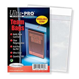 Příslušenství ke kartám - Obal na karty - Team Bags 13x9cm