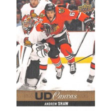 Shaw Andrew - 2013-14 Upper Deck Canvas No.C174