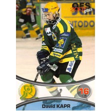 Kapr David - 2006-07 OFS No.385