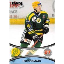 Haluza Petr - 2006-07 OFS No.432