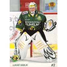 Sáblík Lukáš - 2010-11 OFS No.31