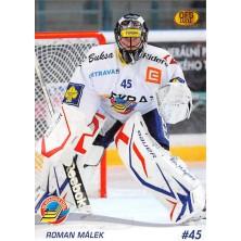 Málek Roman - 2010-11 OFS No.271