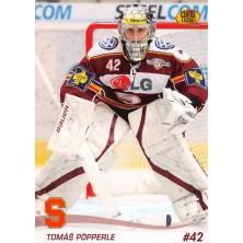 Pöpperle Tomáš - 2010-11 OFS No.318