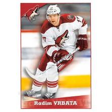 Vrbata Radim - 2012-13 Panini Stickers No.266
