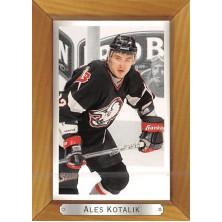 Kotalík Aleš - 2003-04 Beehive No.22